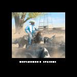 cottonwood springs, western artist, Mikel Donahue