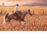Red Sky at Morning, Buster, Mikel Donahue, western artist