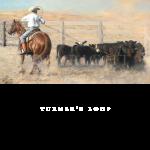 Turner's Loop, Buster, Mikel Donahue, western artist